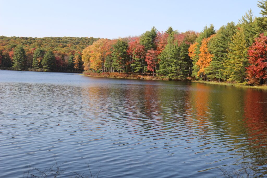 lake surrounded by forest colored with fall foliage reds, oranges, and yellows